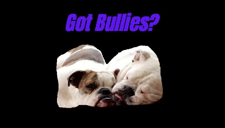 Bulldog Gear